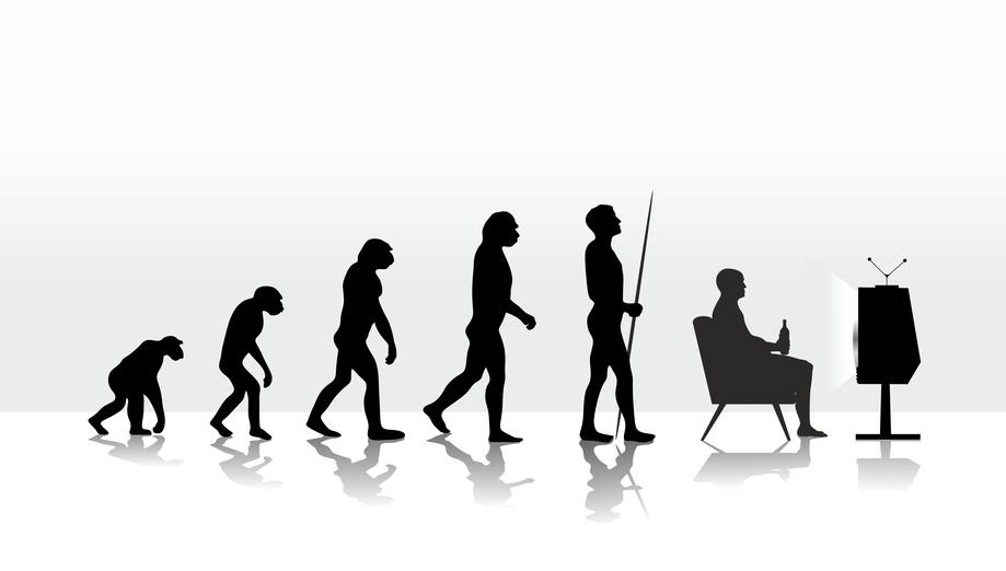 Richtig Sitzen - 11 Schritte für eine bessere Sitzhaltung: Evolution des Sitzens