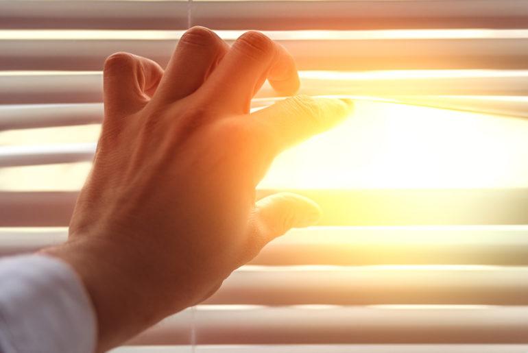 Tageslicht ist ideal zum Arbeiten!