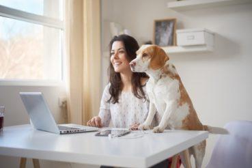 Hunde im Büro sorgen für eine geringere Burnout-Gefahr. / Foto: chika_milan / fotolia.com