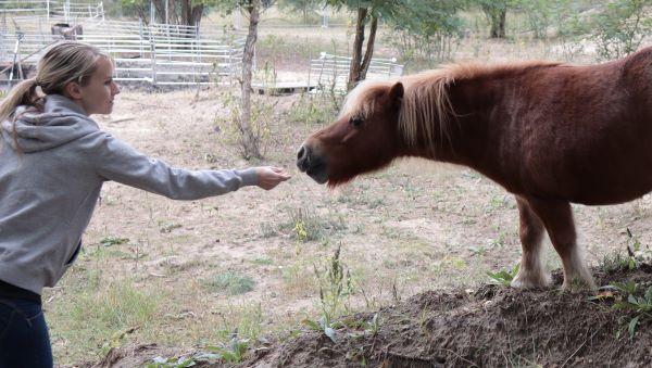 Büromöbel Experte unterwegs im Tierheim am See in Eisenhüttenstadt 4