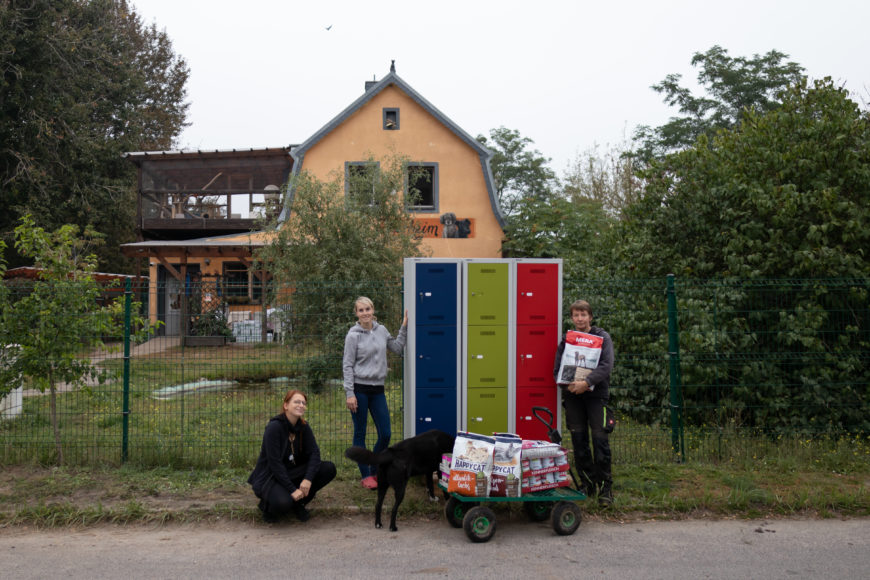 Büromöbel Experte unterwegs im Tierheim am See in Eisenhüttenstadt 3