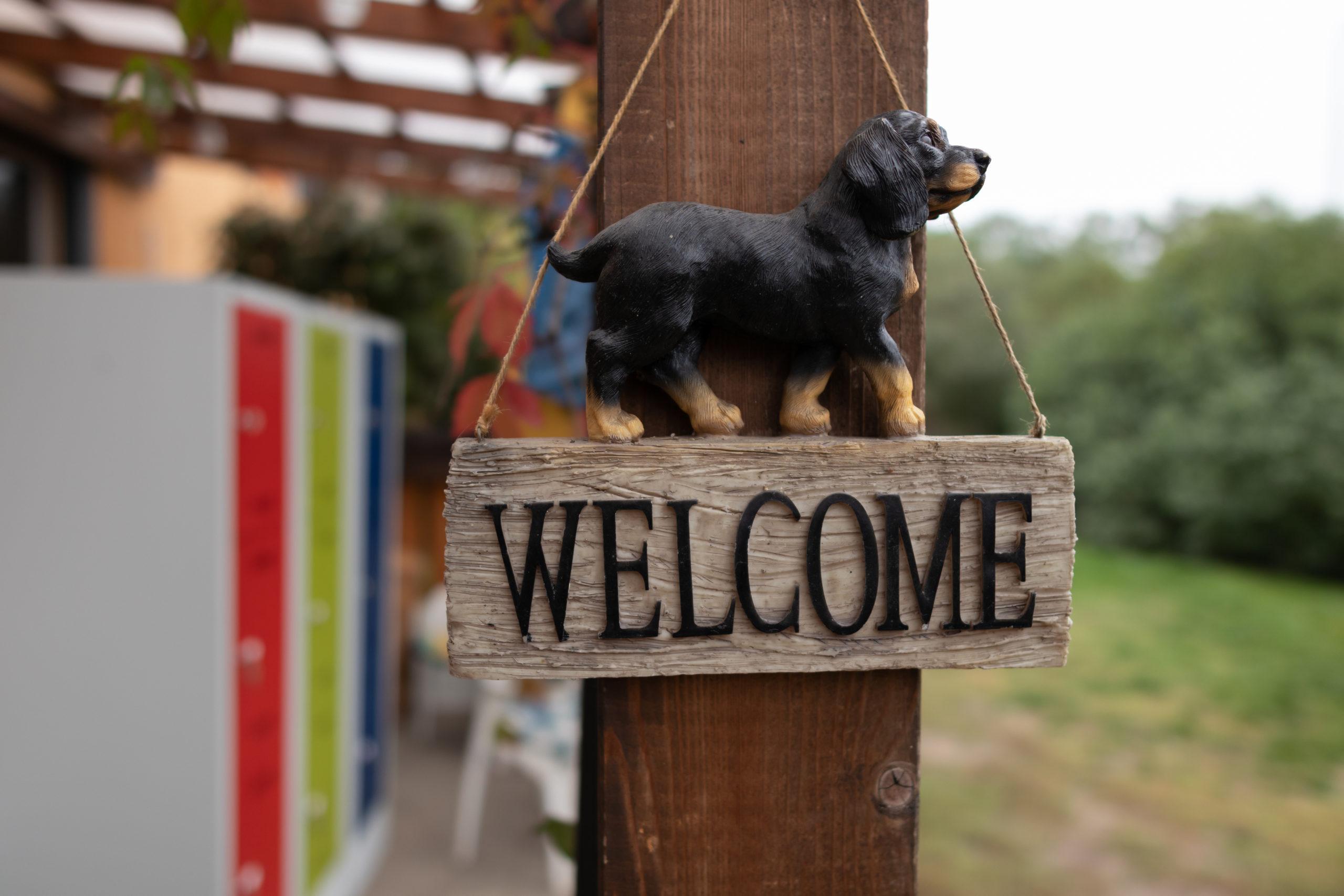 Büromöbel Experte unterwegs im Tierheim am See in Eisenhüttenstadt 2