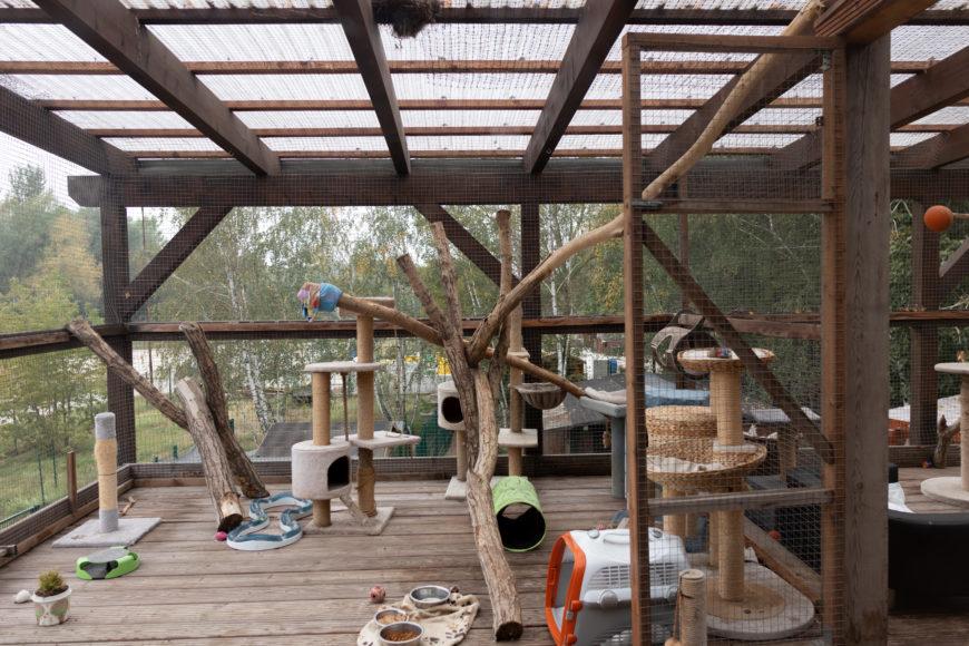 Büromöbel Experte unterwegs im Tierheim am See in Eisenhüttenstadt 5